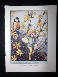 Cicely Mary Barker 1955 Flower Fairies Print. White Bindweed & Winter Jasmine